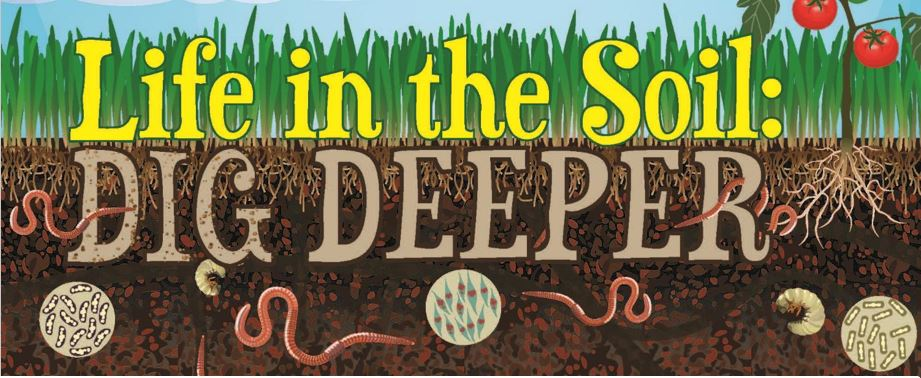 Image result for dig DEEPER in the SOIL